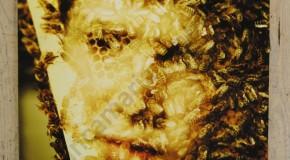 Biancamaria Monticelli alla galleria Il Melograno