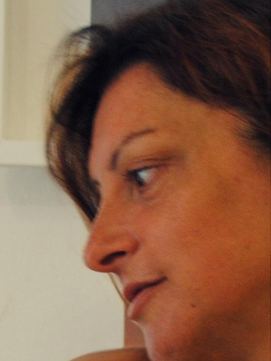 Cristina Guarducci Rotonda 2013 con melograno