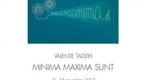 VALENTE TADDEI – MIMIMA MAXIMA SUNT – Viareggio – (09/11 – 24/11)