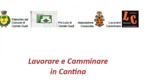 Lavorare e Camminare in Cantina – Cerreto Guidi (Firenze) – 23/08 – 14/09