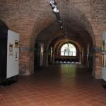 Mostra Uni Tre Fortezza Nuova Livorno 2015 (10)