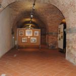 Mostra Uni Tre Fortezza Nuova Livorno 2015 (15)
