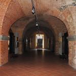 Mostra Uni Tre Fortezza Nuova Livorno 2015