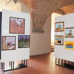 Pier Paolo Macchia Mostra Uni Tre Fortezza Livorno (4)