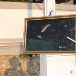 Corti di Sabbia il Melograno 2015 Livorno (7)