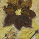Orchidea del Sepolcro