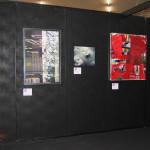 Arte Padova 2015 il Melograno Art Gallery (37)