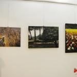 Rosanna Costa mostra Livorno Il Melograno (20)