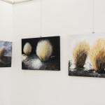 Rosanna Costa mostra Livorno Il Melograno (49)
