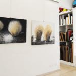 Rosanna Costa mostra Livorno Il Melograno (64)