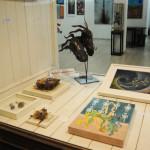 Fizzy Show Il Melograno Art Gallery (42)