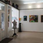 Fizzy Show Il Melograno Art Gallery (62)