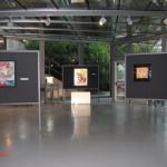 archeoclub-livorno-mostra-pittura-2016-11
