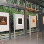archeoclub-livorno-mostra-pittura-2016-110
