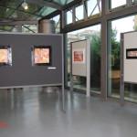 archeoclub-livorno-mostra-pittura-2016-116