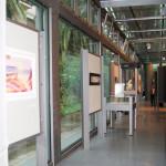 archeoclub-livorno-mostra-pittura-2016-118