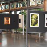 archeoclub-livorno-mostra-pittura-2016-13
