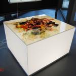 archeoclub-livorno-mostra-pittura-2016-140
