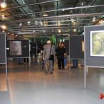 archeoclub-livorno-mostra-pittura-2016-15