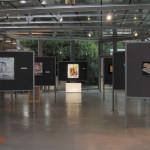 archeoclub-livorno-mostra-pittura-2016