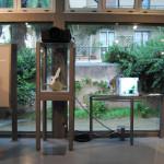 archeoclub-livorno-mostra-pittura-2016-40