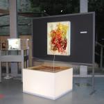 archeoclub-livorno-mostra-pittura-2016-62