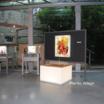 archeoclub-livorno-mostra-pittura-2016-63