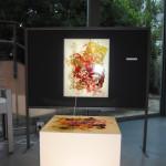 archeoclub-livorno-mostra-pittura-2016-65
