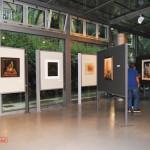 archeoclub-livorno-mostra-pittura-2016-2