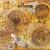 Alfredo Moral – Il Melograno Art Gallery – Livorno – 19/11 – 22/11