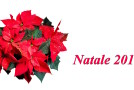Grande collettiva di Natale  – Il Melograno Art Gallery