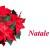 Grande collettiva di Natale  – Il Melograno Art Gallery