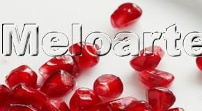 Il portale MeloArte